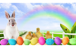 Easter Wallpapers 2017 Happy Easter 2017 HD Wallpapers